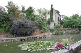 Issel's medieval pond